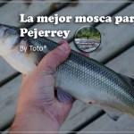 La mejor mosca para el pejerrey… by Toto®