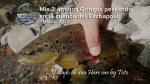 Mis 2 amigos Gringos pescando en la cuenca del Cachapoal
