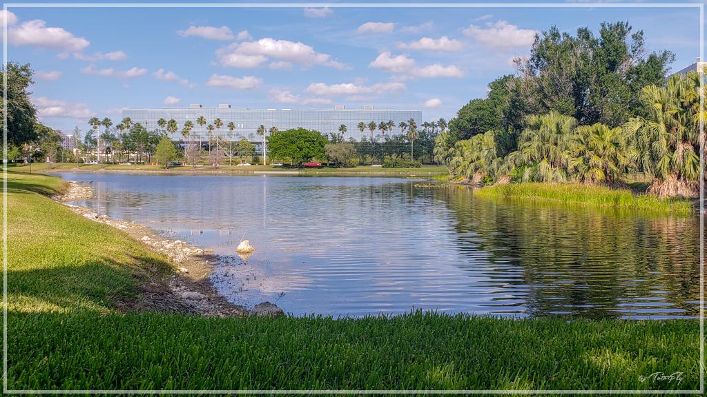 Laguna de Miami
