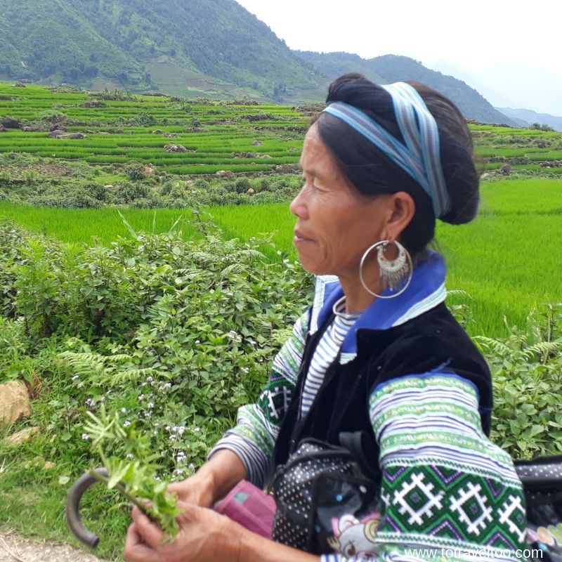 Things to do in Sapa Vietnam - ethnic tribe visits