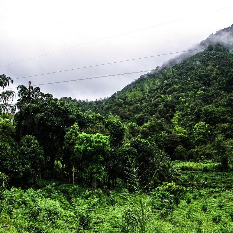 Bentota - Top Places To Visit in Sri Lanka