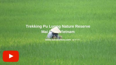 Guide to Mai Chau Vietnam Trekking in Mai Chau