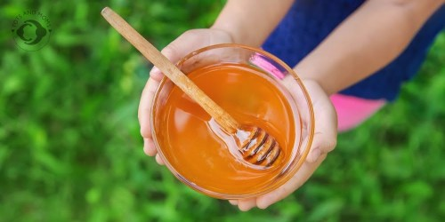 Can I give honey to my baby why no honey for babies below an year infant botulism what is infant botulism symptoms of infant botulism when to visit a doctor for infant botulism
