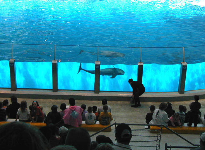 Indianapolis Zoo Dolphin Adventure Pavilion 2002