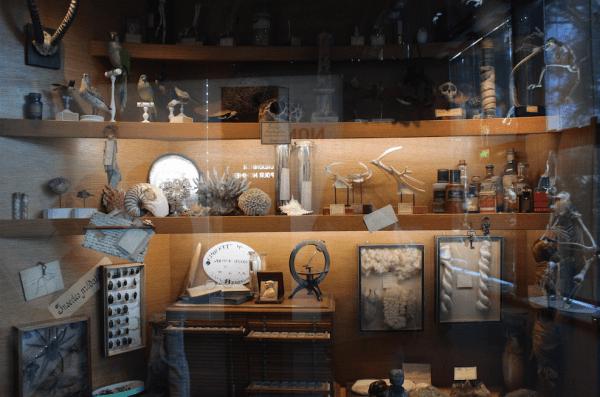 museum 03