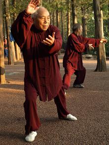 Tai Chi-art-martial-interne-extérieur-parc-mouvement