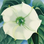 #01 - Georgia OKeeffe, Jimson Weed/White Flower No. 1 (1932)