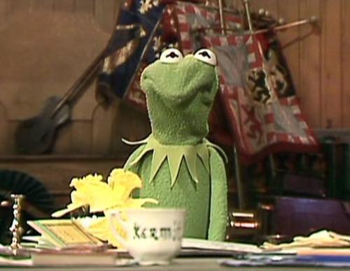 Kermit scrunch sheesh