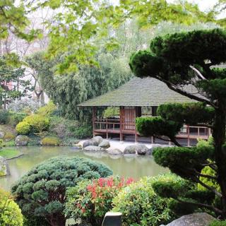 lieu de tournage jardin japonais pierre