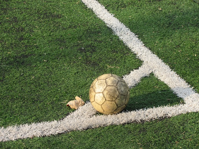 ligue des champions résultats du 25 novembre