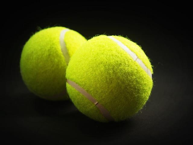 Wawrinka bat Tsonga en quart de finale de l'open d'Australie