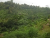 indonesie_2922
