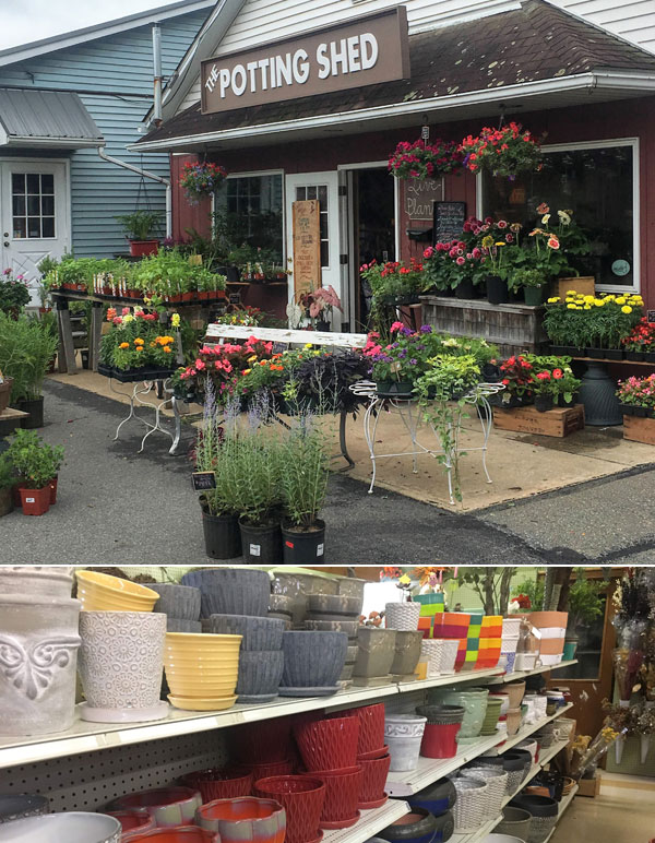 The Potting shed flower shop front of store with variety of bright flowers for sale