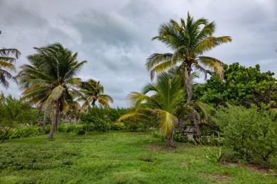 2018-10-07 - Tulum - Site Maya-12