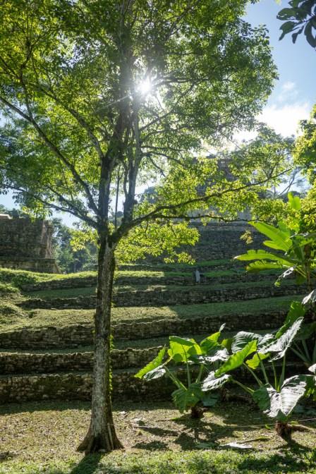 2018-10-22 - Palenque-5