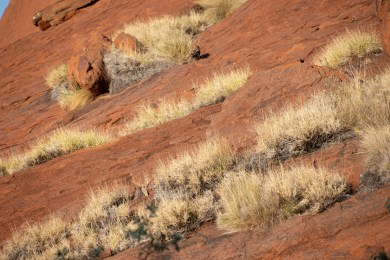 2019-01-23 - Uluru-17