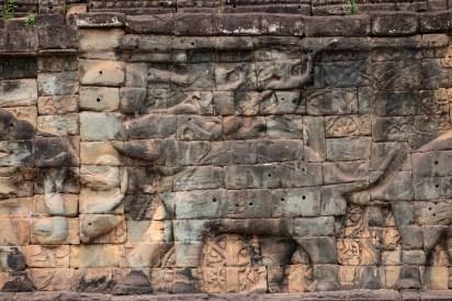 2019-03-14 - Terrasse des éléphants-3