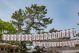 2019-05-16 - Sumiyoshi Taisha-27