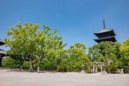2019-05-23 - Toji-10