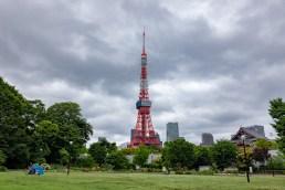 2019-06-08 - Shiba park-9