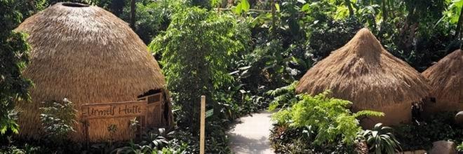 fünf Dschungelhütten - Relaxerlebnisse