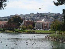 San Francisco - Blick auf eine der zahlreichen Hügel