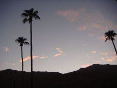 Sonnenuntergang in Palm Springs