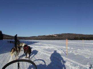Hundeschlittentour auf See