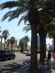 Der Las Vegas Strip am nördlichen Ende