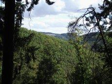 Soonwaldsteig 5