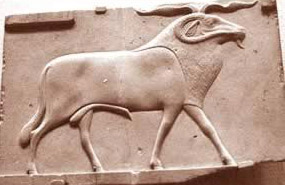 The Ram of Mendes, probably a manifestation of Banebdjedet