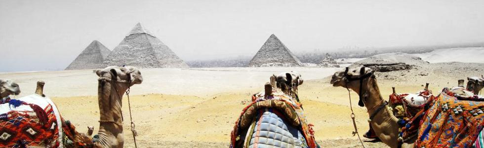 Enjoy a Camel Ride Around History Visit the Pyramids