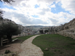 The City of David