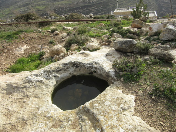 Boutique Wine - Gvaot Winery Tour Israel 2015 (1)