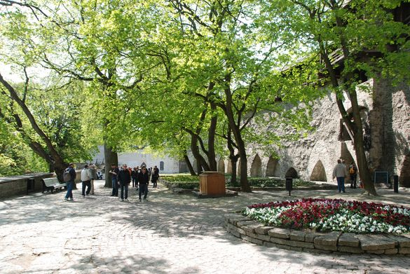 Danish King's Garden, Image Credit: http://www.tourism.tallinn.ee/eng/fpage/explore/attractions/old_town#!p_174827