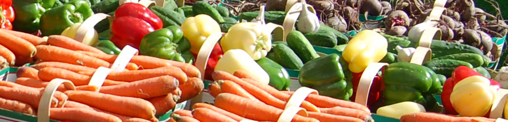 Farmers Market - Libby Macdonald