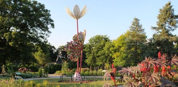 International sculpture in Hendire Garden RBG