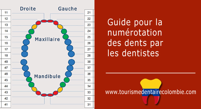 guide-numerotation