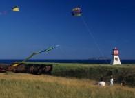 Cerfs-volants, Cap Alright, Havre-aux-Maisons, Îles de la Madeleine