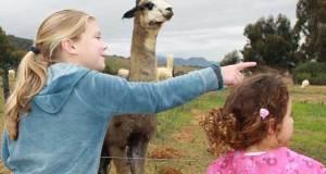 Children with an Alpaca