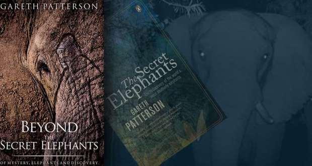 Beyond the Secret Elephants composite graphic