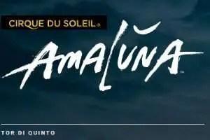Rom Tickets Cirque del Soleil Amaluna