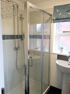 Lily's Pad - Studio Shower