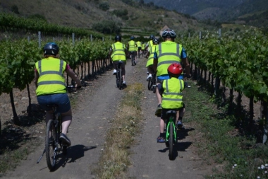Down Hill Bikes Salou