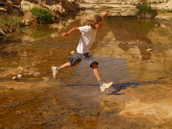 Ein Avdat - the spring in the desert. Credit: Tal Gluck
