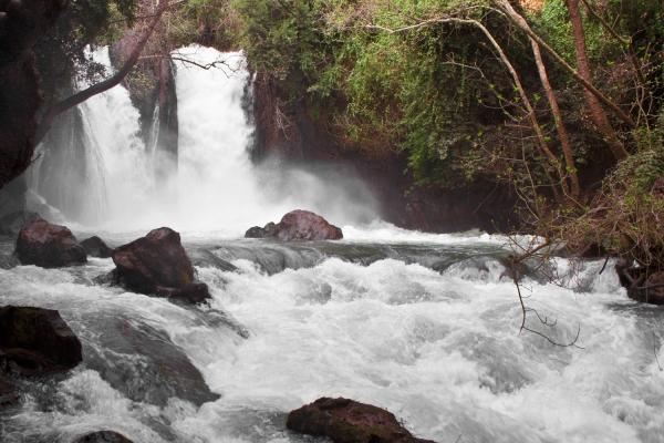 Banias Falls. Courtesy Boruch Len