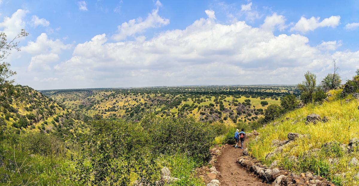 Golan Heights Black Canyon1