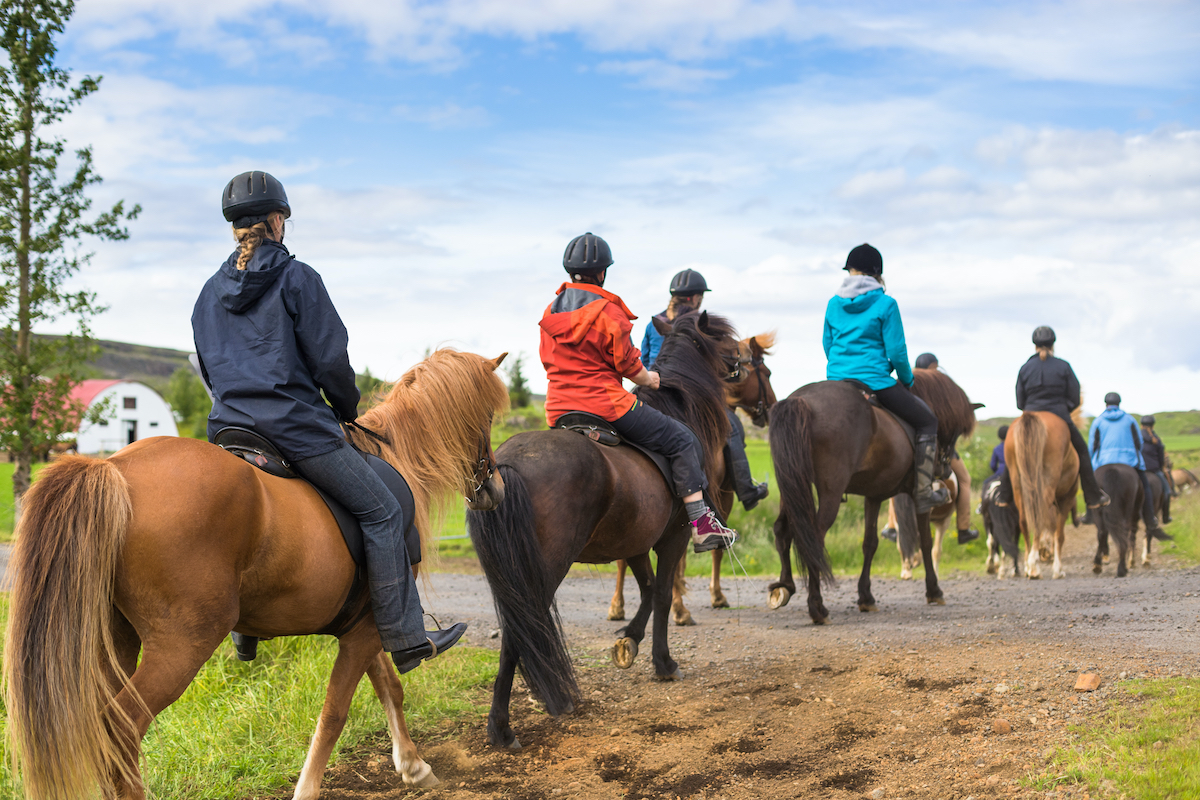 Horse Riding And Hiking Day Tour In The Galilee 2