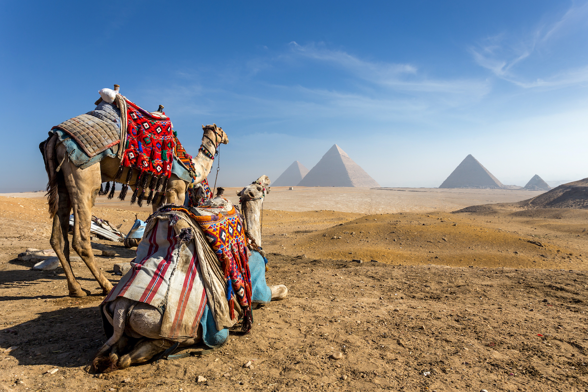 Cairo Tour From Eilat Or Tel Aviv - 2 Day 2