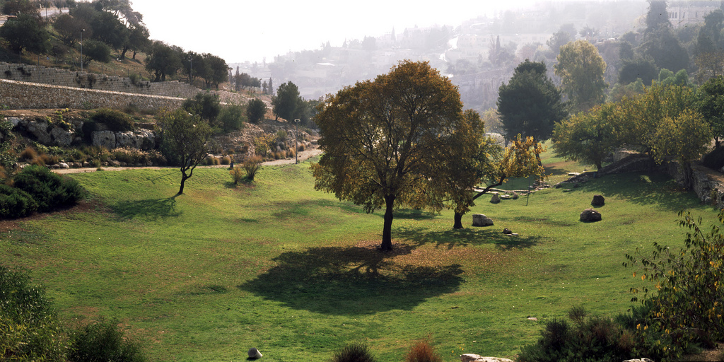 JerusalemBest12 qw